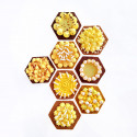 Hexagonal tart ring Ht 2 cm VALRHONA, perforated stainless steel