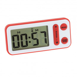 Electronic thermometer-timer