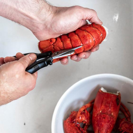 Seafood shears